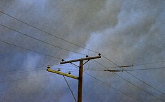 Storm Clouds (pjpink) Tags: storm clouds sky electricity pole weather scottsaddition rva richmond virginia august 2017 summer pjpink 2catswithcameras
