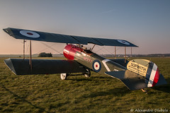 1916 Sopwith Pup (replica) (Alexandre D_) Tags: canon eos 70d sigma sigma1835mmf18hsmart 1835mm lens bénifontaine vimy sopwith replica pup betty phyllis ww1 1916 sopwithpup vimyflight vimy100 aircraft airplane plane avion spotting light green military lestweforget evening creamy aerodrome canada france nord pasdecalais hautsdefrance lightroom reflection sun fall printemps lumiere
