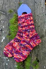 2017.09.04. sukat 38-39 regia colorito color 3261m (villanne123) Tags: 2017 socks villasukat villanne regiacoloritocolor