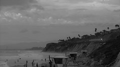 Surfliner at Del Mar (Rand Luv'n Life) Tags: odc our daily challenge surfliner passenger train california coast del mar ocean beach bathers people cliff palm trees landscape storm clouds calm waves seascape lifeguard towers monochrome blackandwhite outdoor