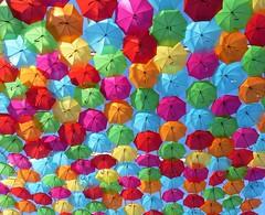 Umbrellas in the sky 56 e (#moliço) Tags: cores águeda umbrella céu festa decoração panasónicdmcfz62