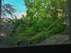 Castle of Glass (Ollivier.Amaury91) Tags: urbex abandonned place nature abandonné abandonnée lieu foret 2017 paris urbexparis urbexing france urbexfrance zone urbexzone french frenchurbex photographie school architectural architecture ecole lycée