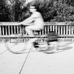 In Motion B&W (Mike Matney Photography) Tags: 2017 canon eos6d forestpark midwest missouri september nature outdoors wildlife bicycle motion blur bird birds stlouis unitedstates us