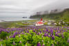 Church Of Vik (José Miguel Serna) Tags: vik iceland island clouds islandia landscape lupinus church sea churchofvik josemiguelserna colors flower artico artic