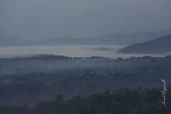 just another lovely morning! (MotoFotog) Tags: arvindmanjunath tata hexa motofotog