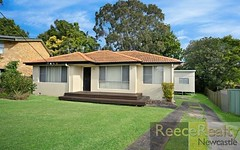 1 Hansen Place, Shortland NSW
