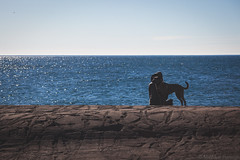 Enjoying the view (michaelraleigh) Tags: 100300mm northshore landscape serene secluded water outdoors canoneos5dmarkii canon sky
