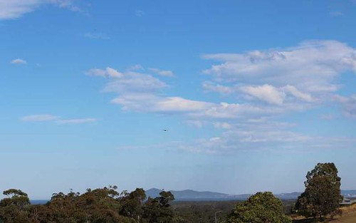 Tallwoods, 59 Hilltop Parkway, Tallwoods Village NSW 2430