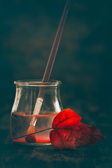 October color (Ro Cafe) Tags: autumn red stilllife fall glassjar leave lowkey paintbrush nikkormicro105f28 nikond600