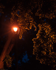 Seeing the Light (theReedHead) Tags: thereedhead sonya7 sonycamera sony2470mmf4 sonyzoomlens monochrome monochromatic anthropomorph anthropomorphic surreal surrealism surrealistic zany fantasy milwaukeelakefront spring latespring nighttime dusk evening milwaukeephotographers wisconsinphotographers milwaukee wisconsin lampposts streetlights