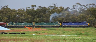 C504 C506 and C509 are back home in the Wimmera after years of working elsewhere in the country