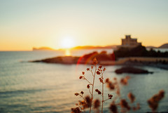 the brightest lights III (culuthilwen) Tags: sonyalpha230 minolta28mmf28 minolta28mm minolta 28mm minoltaaf f28 sardinia alghero bokeh sunset dof blurry light summer sea seascape goldenhour gold sonysti nature