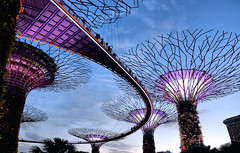 sky walk (poludziber1) Tags: street streetphotography skyline summer sky sunset city colorful cityscape color colorfull capital clouds singapore architecture asia travel tower light urban blue building pink matchpointwinner t574