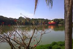 Lagoa Taquaral (Osvaldo Natal Forcelli) Tags: brasil brazil campinas sp sãopaulo sudeste lagoataquaral parqueportugal nokialumia 1020 lago caravela nau