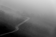 Towards the unknown (anthony.vairos) Tags: noiretblanc bw blackandwhite road path montain brouillard trees automne nikon d750 fullframe manfrotto lightroom photoshop aravis french alps photo photography photographie passion beautiful life wild nikkor 70200mm f4 plein format dslr minimaliste
