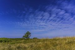On Your Own (clarkschiring) Tags: oregon sky minimalism minimal