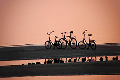 Bycicles (Elisa Medeot) Tags: bycicles biciclette silouette contrasto tramonto sunset reflexion riflesso sea mare spiaggia beach canon