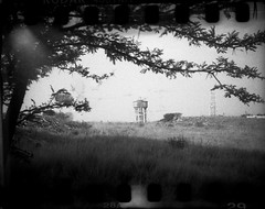 pete-P917 (pete-analogue-photos petevideos) Tags: kodak bantam 828 with tmax 400 old film self rolled for sprockets