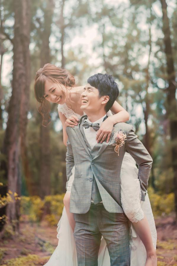 35518341524 f721657ea1 o [台南自助婚紗] K&N /崇尚森林草原系風格
