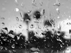 Raindrops (soniaadammurray - Off) Tags: iphone raindrops nature blackwhite