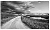 It was a stormy week. (Jill Bazeley) Tags: storm thunderstorm clouds dark dirt road lake pond vanishing point viera wetlands ritch grissom memorial brevard county space coast melbourne rockledge cumulus sony a6300 1018mm monochrome landscape black white unpaved swamp cumulonimbus