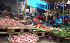 India 2017 74 (megegj)) Tags: gert india markt market