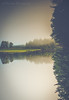 Reflections (naasha2006) Tags: reservoir water reflections trees cloudy upsidedown abstract morning sunrise
