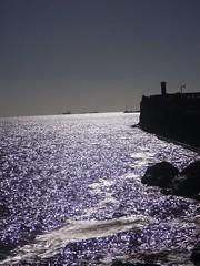 (Dying Lights) Tags: montevideo uruguay rambla puerto beach