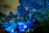 Pandora nights 2 (fractal pics) Tags: disney waltdisneyworld disneyworld animalkingdom avatar pandora disneyphotos disneyphotography sonya7rii disneyparks disneyatnight