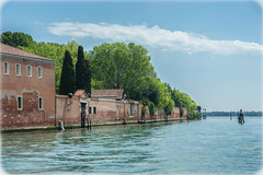 Overflowing (JDWCurtis) Tags: venice venezia venetian northernitaly northitaly italy italian italianstreet lagoon water waterway waterfront bodyofwater river trees green tree wall blue skyblue sky bluesky