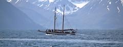 Húsavík  Iceland (46) -1 (Gerard Koopman) Tags: húsavík iceland boat