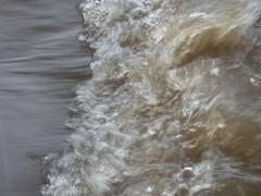 UW110095.jpg (jramspott) Tags: georgia storm river nature water chattahoochee atlanta rain tropicalstorm irma unitedstates us