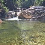 o rio (6)