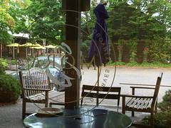 2017 YIP Day 250: Arom/Mora window