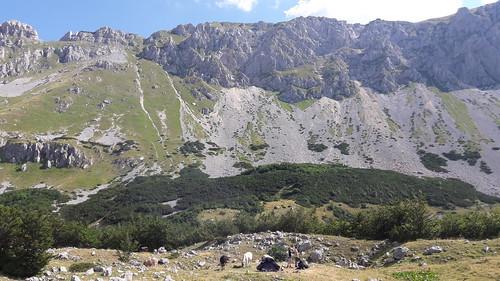 2017_08_Montenegro_036