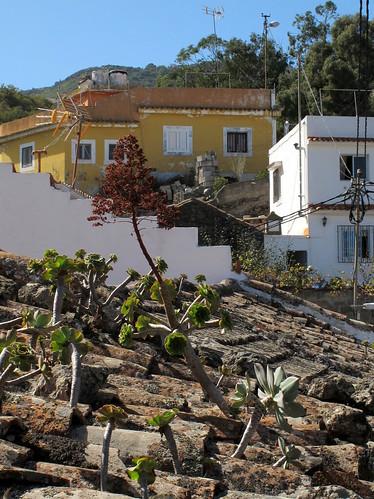 Gran Canaria_053