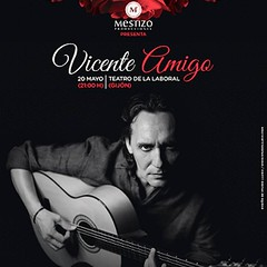 "Vicente Amigo • <a style=""font-size:0.8em;"" href=""http://www.flickr.com/photos/155515696@N05/36619870071/"" target=""_blank"">View on Flickr</a>"