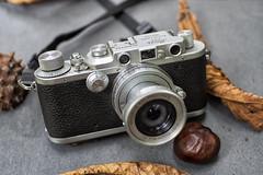 Leica IIIa with Elmar 50mm F/2.8 (Arne Kuilman) Tags: leica iiia leicaiiia 1936 ernstleitz wetzlar madeingermany prewar handmade camera 135 7artisans fall kleinbeeld original elmar 50mmf28 1956