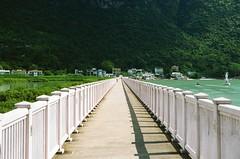 The Pink Bridge (superzookeeper) Tags: eos1 analog film portra hk hongkong kodakportra160 portra160 kodak canoneos1 ef2470mmf28liiusm eos taio bridge pink pinkbridge water waterfront over1000views street