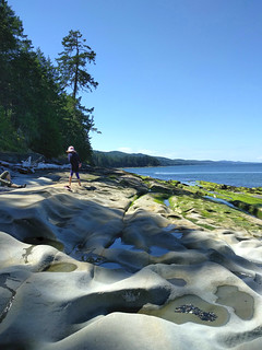 Exploring eroded sandstone at Pebble Beach