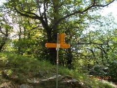 DSCN0185 (Puntin1969) Tags: segnale svizzera ticino collina agosto nikon giro