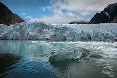 Chile, 2014. (semaone) Tags: chile cile patagonia sanrafael laguna glacier ghiacciaio iceberg