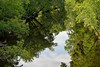 reflections on the Floodwood river (l i v e l t r a) Tags: 85mmf14g nikkor d610 f71 river floodwood mn