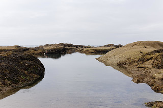 Tidal pool with fisher man