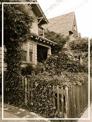 Neighbors (Melinda Young Stuart) Tags: fence garden sepia frame berkeley neighbors two roof gable houses corner yard fences proverb good english hff