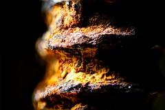 Screw... (Altazur) Tags: macromondays macro mondays rust screw metal black low smile saturday smileonsaturday blackattheblack blackattheback contrast lowkey