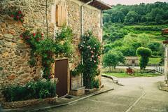 La casa de las dos rosas (Krrillo) Tags: david carrillo casa house flores green verde roses rosas sony a6000 pueblo village riocavado sierra mountains