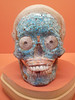 Decorated Skull, LACMA, Los Angeles (DannielleV) Tags: decorated skull mixtec zapotec lacma los angeles county museum art blue tiles white teeth large eyes orange background mesoamerican california united states
