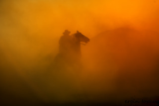 Rider in dust and light