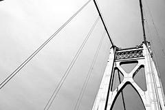 bridge music (larrynunziato) Tags: bridge fdrmidhudsonbridge visualmusic hudsonvalley abstract experimentalbw